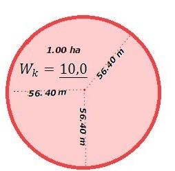 Współczynnik kształtu dla koła - 10,0